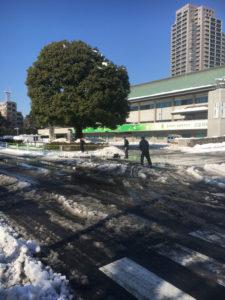 雪かきの活動-5