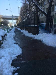 雪かきの活動-6
